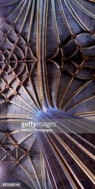 The ribbed vault on top of the ceiling in the Cathedral of Plasencia.