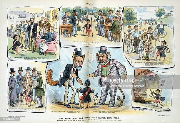 The right man for mayor of greater New York by Frederick Burr Opper 18571937 artist 1897 Print shows a vignette cartoon with Puck as Diogenes...