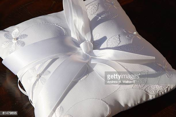 RATES The ring bearer's pillow during the wedding of Ivana Trump and Rossano Rubicondi at the MaraLago Club on April 12 2008 in Palm Beach Florida