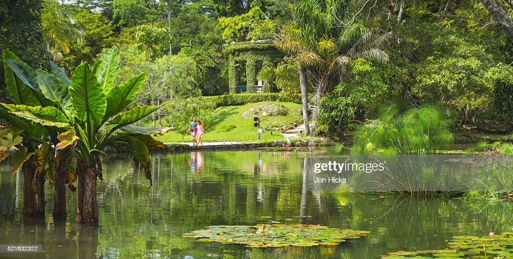 The Rio De Janeiro Botanical Garden Stock Photo | Getty Images