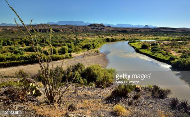 the rio grande flows on by... - chihuahua desert stock pictures, royalty-free photos & images