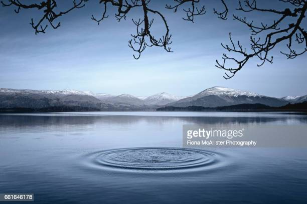 the ripple effect - rippled stock pictures, royalty-free photos & images