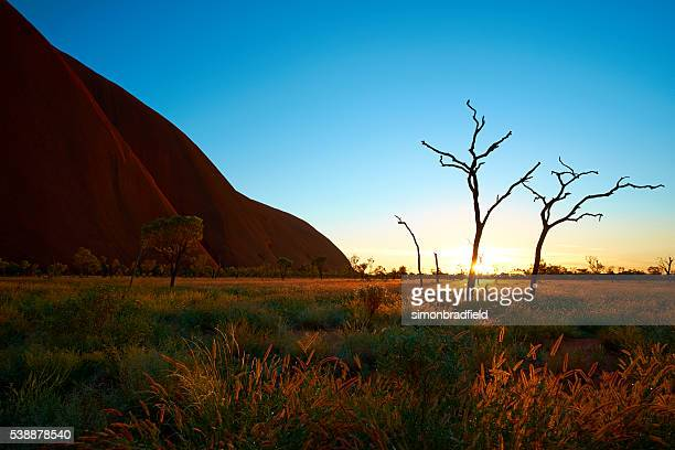 The Rising Sun At Uluru