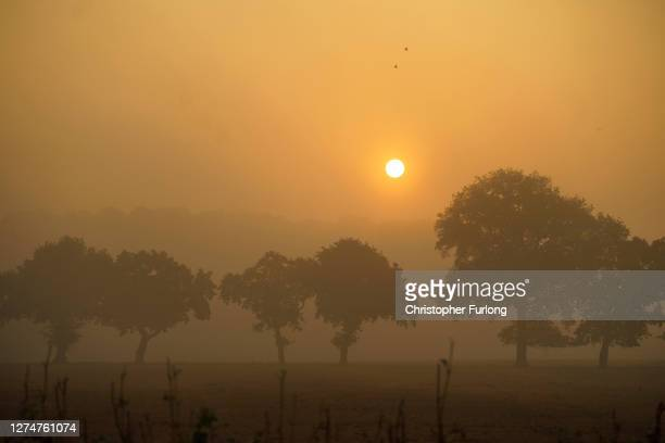 The rising sun begins to burn off a morning mist across Cheshire fields on the first day of Autumn across the northern hemisphere on September 22,...