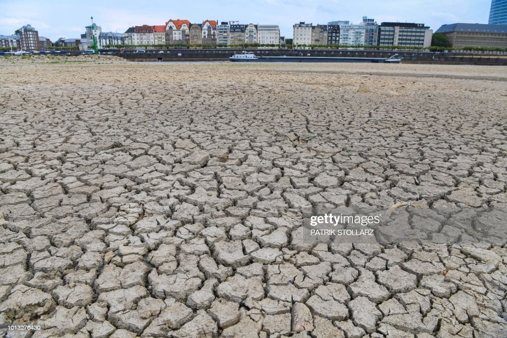 TOPSHOT - The river bed of the Rhine is dried on August 8, 2018 in Duesseldorf, western Germany, as the heatwave goes on. (Photo by Patrik STOLLARZ / AFP) /
