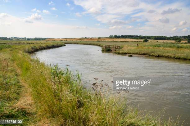 the river blyth - river stock pictures, royalty-free photos & images