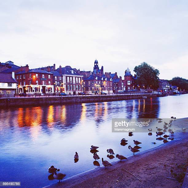 the river ouse and the town - ouse river stock photos and pictures