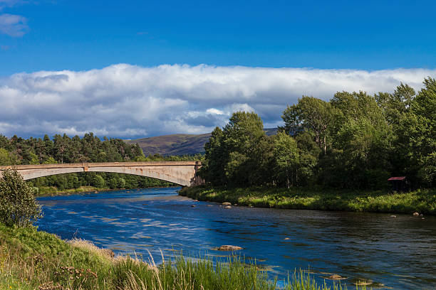 The River Spey Wall Art