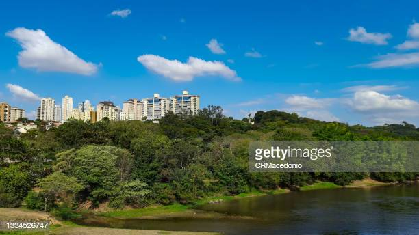 the river, the urban forest and the city, under beautiful blue sky. - crmacedonio stock pictures, royalty-free photos & images