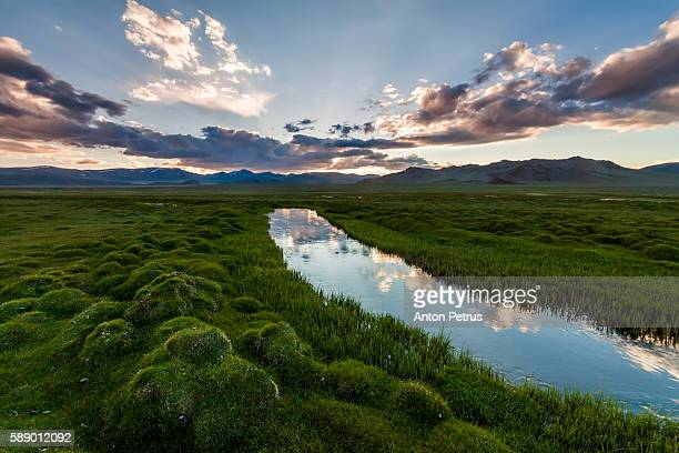 The river with green banks in Iceland