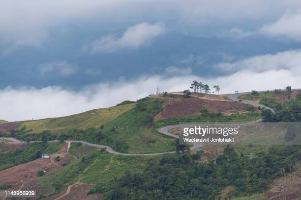 the road between the top of phu thap boek hill, which is beautiful on a cloudy day. - boek imagens e fotografias de stock