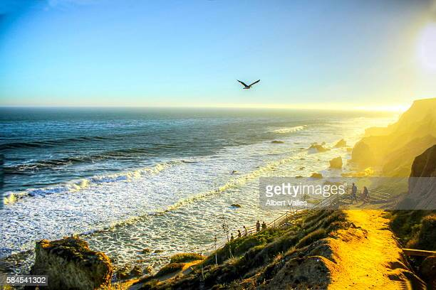 the road down to the beach - malibu beach stock pictures, royalty-free photos & images