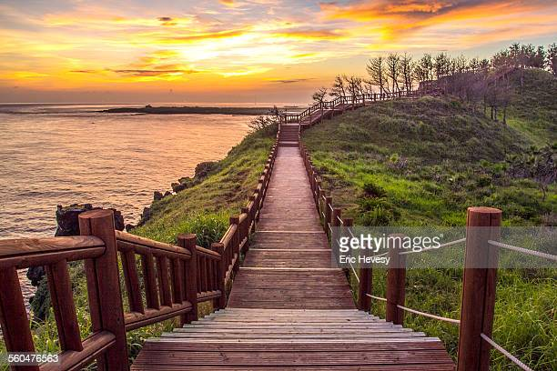 the road less traveled at sunset - jeju island stock pictures, royalty-free photos & images