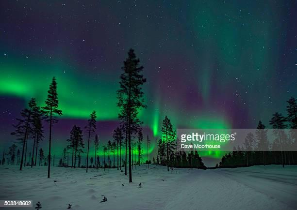 The road North to the Aurora Borealis