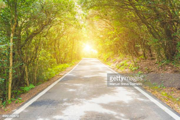 the road - hybrid vehicle stock pictures, royalty-free photos & images