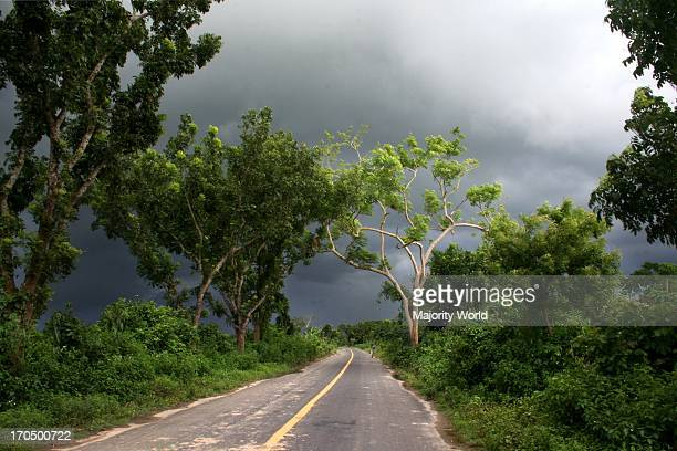 The road to Meherpur Bangladesh June 10 2008