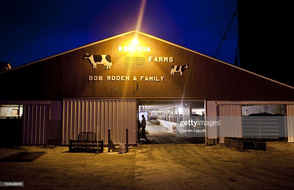 U.S. Dairy Farming Still A Struggle Despite Rise In Milk Prices : News Photo