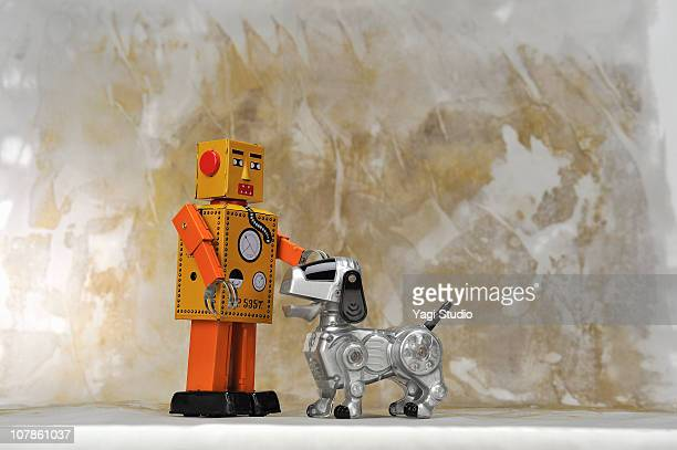 The robot of the dog and robot