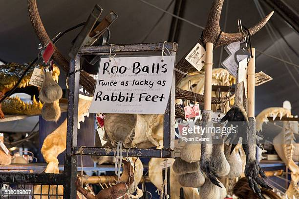 the rocks market in sydney - scrotum stock photos and pictures