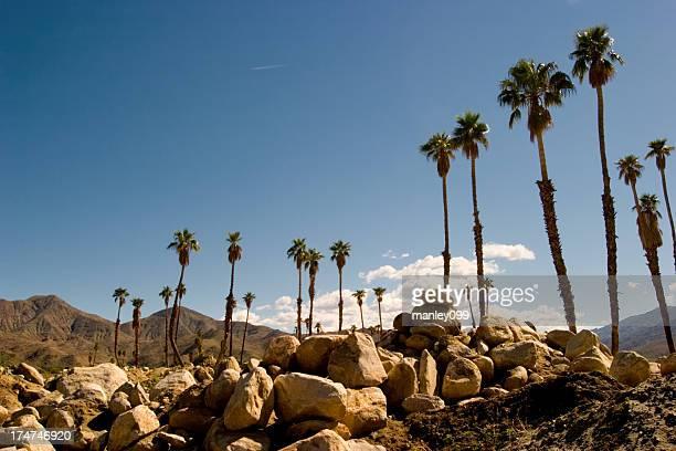 Die Rocky Palm Springs