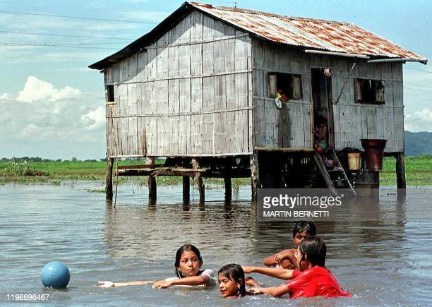 The Rodriguez family children play in flood waters that destroyed their farm fields in Samborondon Ecuador 40kms north of Guayaquil The flood waters...