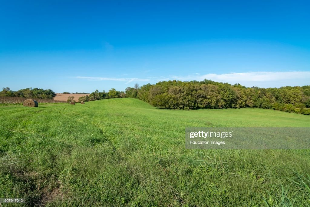 the rolling landscape of fields in the bluegrass area of kentucky