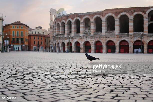 The Roman Arena and Piazza Bra in Verona, Italy