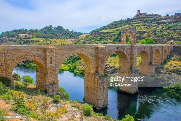 The Roman Bridge of Alcantara