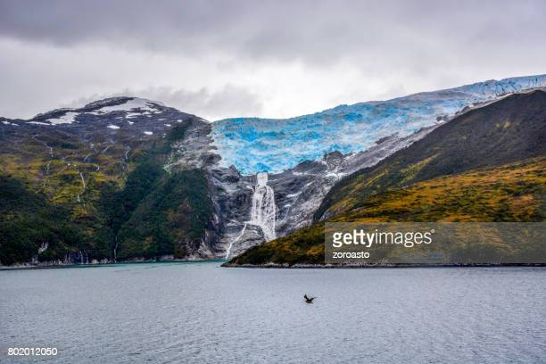 The Romanche Glacier on the Beagle Channel, Chile, South America