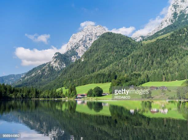 The romantic lake Hintersee at morning with Reiter Alpe Mountain chain in the NP Berchtesgaden Europe Central Europe Germany Bavaria July