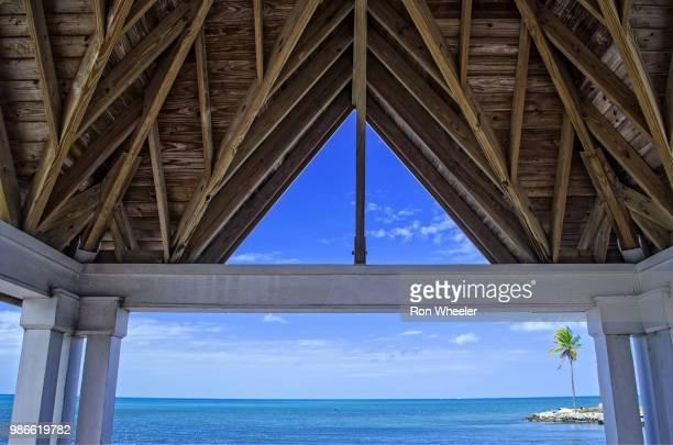 the roof - marina wheeler foto e immagini stock