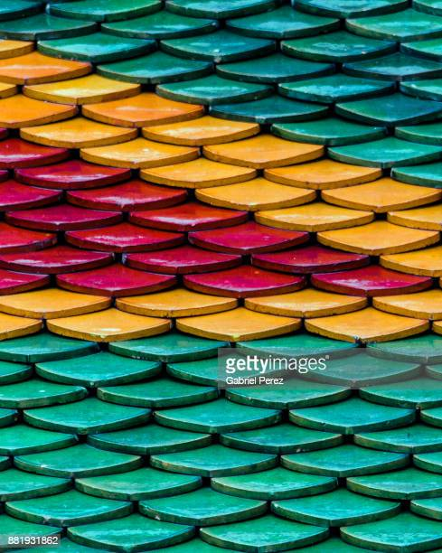 The Roof Tiles of Wat Pho