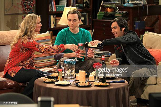 'The Roommate Transmogrification' After hearing Leonard and Priya indulge in a 'Star Trek' bedroom fantasy Raj moves in with Sheldon much to Penny's...