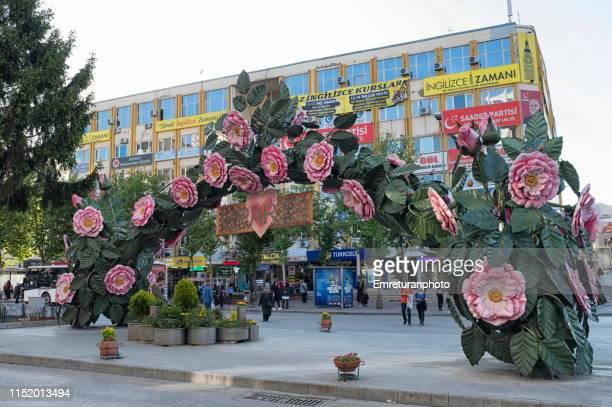 the rose arch at i̇sparta town center,turkey. - emreturanphoto stock-fotos und bilder