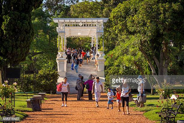the rose garden in february 3 park - palermo buenos aires stock photos and pictures