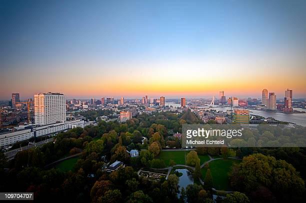 The Rotterdam skyline