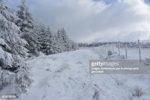 The rough passage under snow