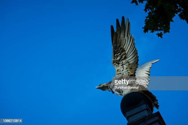 the royal air force memorial, london, uk - eagles london stock pictures, royalty-free photos & images