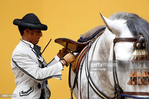the royal andalusian school of equestrian art. rider saddling a horse - jerez de la frontera stock pictures, royalty-free photos & images