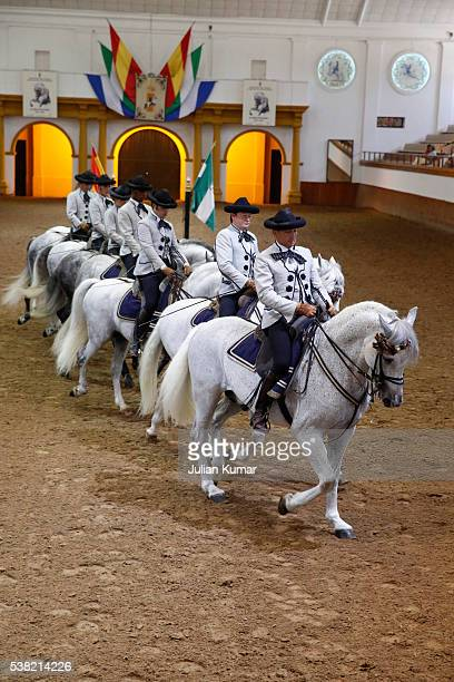 the royal andalusian school of equestrian art. show. - jerez de la frontera fotografías e imágenes de stock