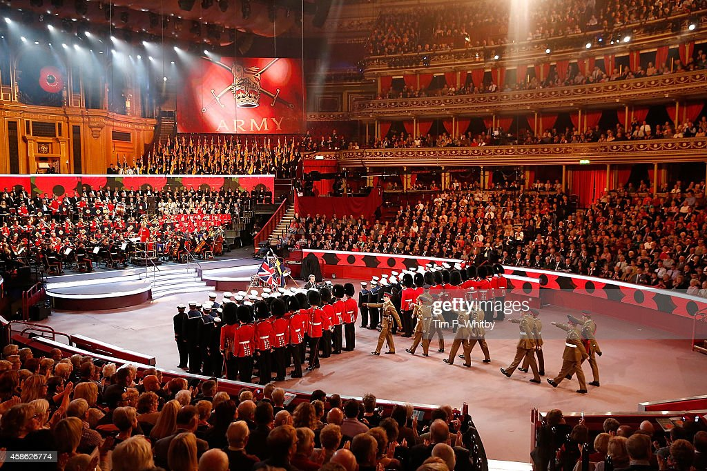 Festival Of Remembrance 2014 - Matinee : News Photo