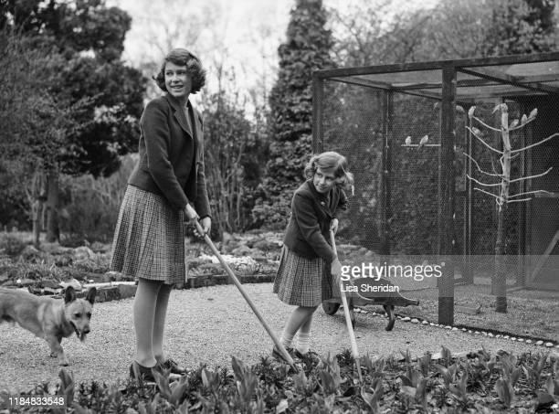 The Royal Princesses Elizabeth and Margaret with a Pembroke Welsh Corgi dog in their garden at the Royal Lodge in Windsor Great Park, UK, April 1940.