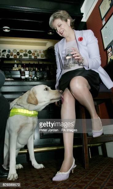 The Rt Hon Theresa May MP with Danni the guide dog in the Bellamy bar at the House of Commons in central London Over 100 MP's opened the bar to guide...