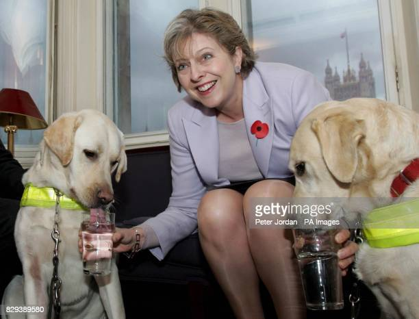 The Rt Hon Theresa May MP with guide dogs Danni and Reuben in the Bellamy bar at the House of Commons in central London Over 100 MP's opened the bar...