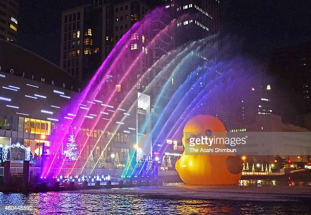 The Rubber Duck the artwork by Dutch artist Florentijn Hofman is illuminated during the test lighting of hte Nakanoshima Water Fantasia on December...