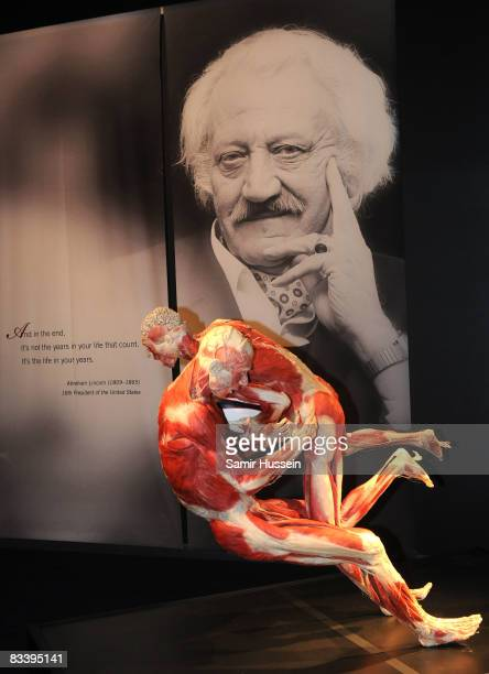 The Rugby Gladiators exhibit is displayed at Gunther von Hagens' 'Body Worlds And The Mirror Of Time' exhibition at the O2 bubble on October 23 2008...