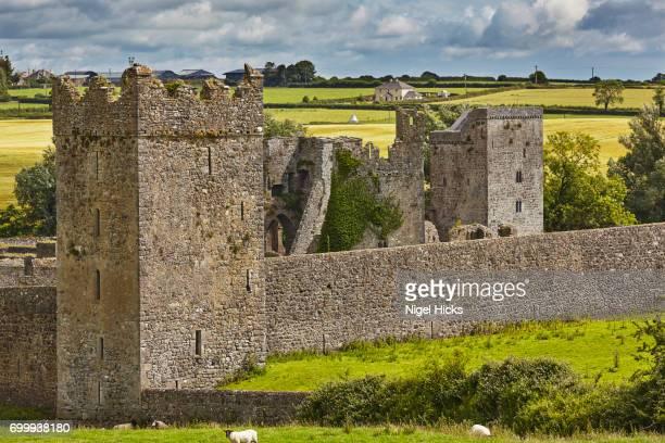 The ruins of Kells Priory, Kells, near Kilkenny, County Kilkenny, Ireland.