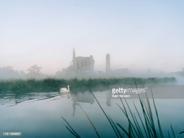 the ruins of newark abbey reflected in a stream, surrey - stock photo - travelstock44 stock pictures, royalty-free photos & images