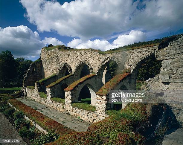 The ruins of the abbey founded by Cistercian monks Alvastra Sweden