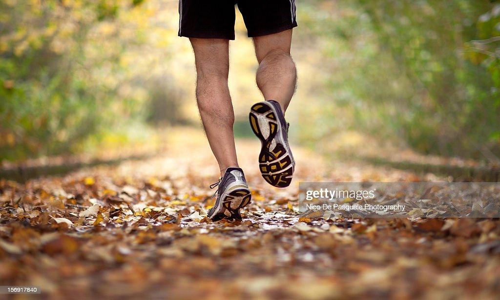 The runner : Stock Photo